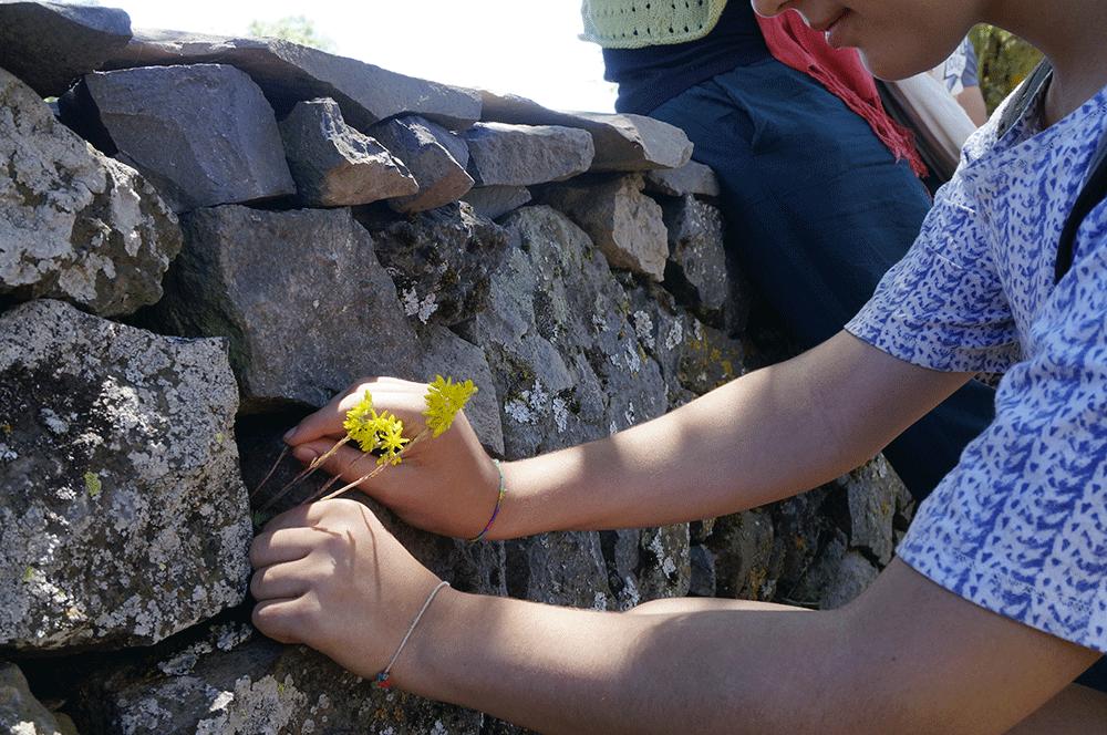 Le Volontariat chez Caciaura